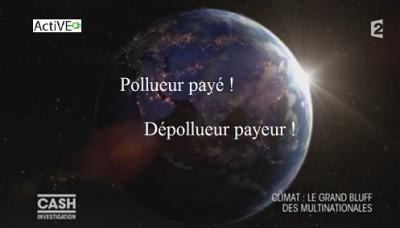 pollueur paye depollueur payeur